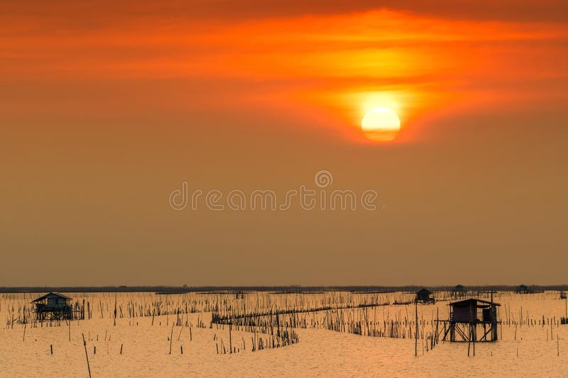 Beautiful sun in summer. Sunset sky over the sea, fisherman`s hut and mangrove forest in the evening. Bamboo pole at coast. Bamboo. Embroidery to slow down the stock photos