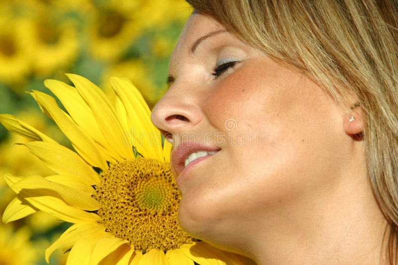 Beautiful Sunflower Woman. In the sun royalty free stock photo