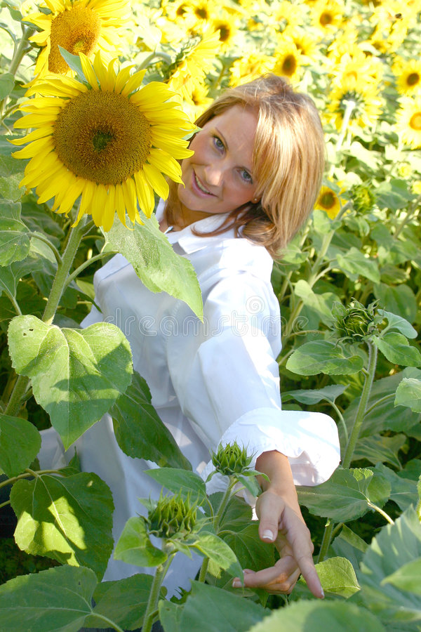 Beautiful Sunflower Woman. In the sun stock images