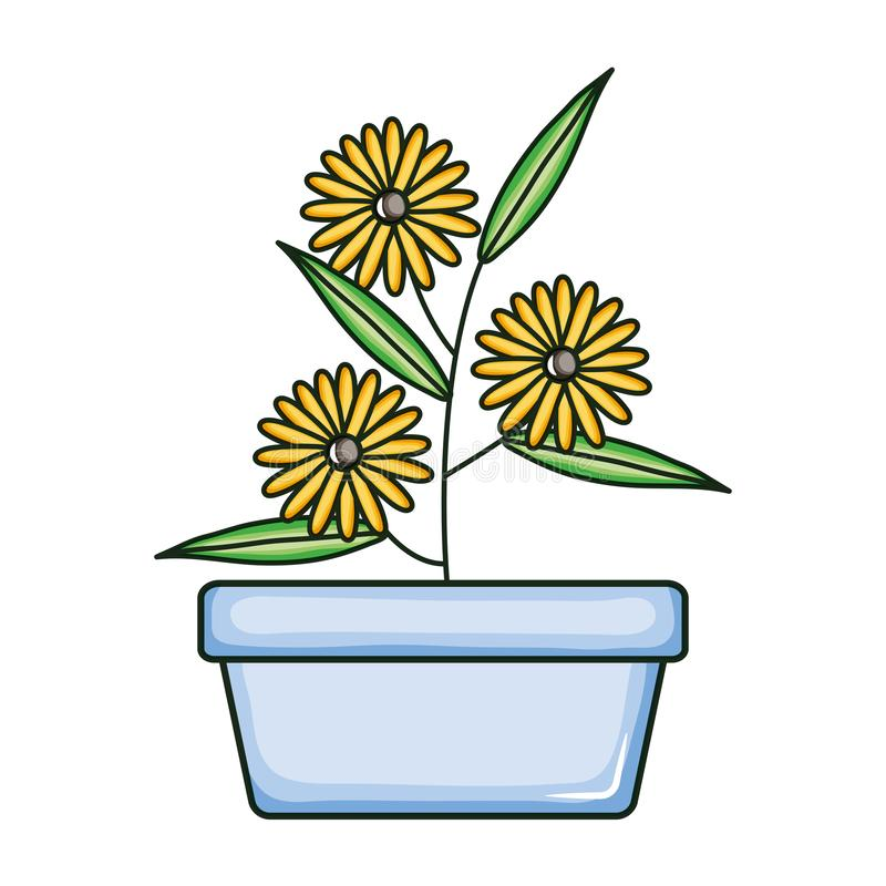 Beautiful sunflowers garden in square ceramic pot. Vector illustration design royalty free illustration