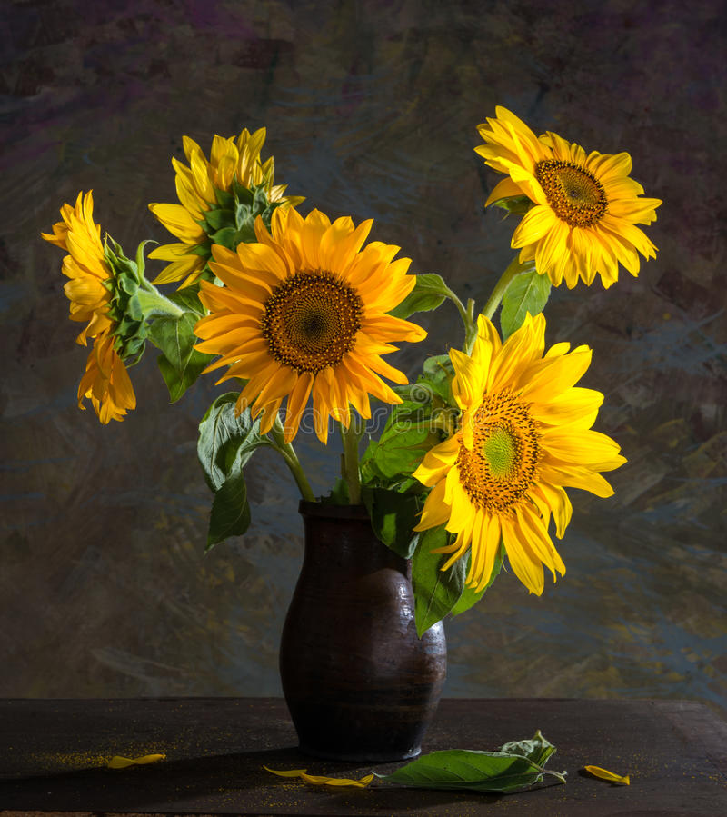 Beautiful Sunflowers In A Vase Stock Photo - Image of ...