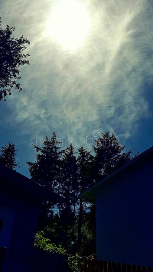 Beautiful sunlit sky through trees royalty free stock images
