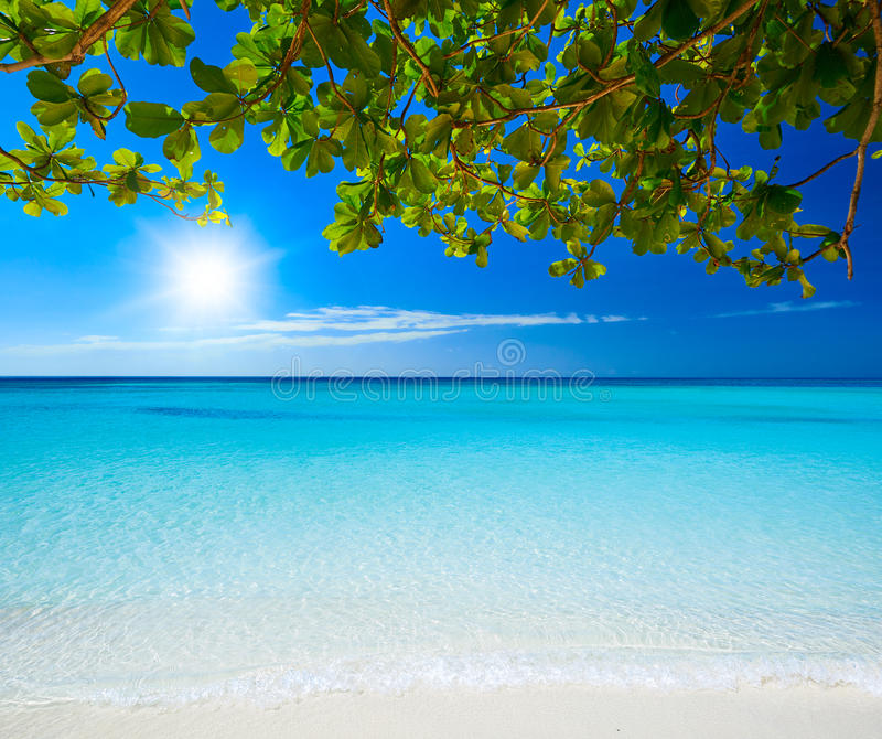 Beautiful, Sunny Day At A Tropical Beach Stock Photo ...  |Sunny Beautiful Day