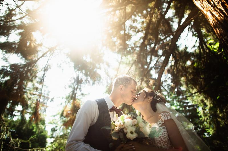 Beautiful sunny day. Wedding couple posing on the background of nature stock images
