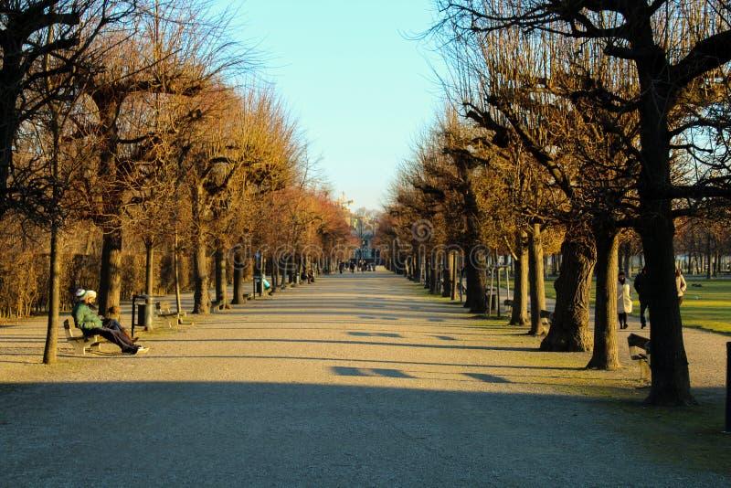 Beautiful sunny park walk stock photos