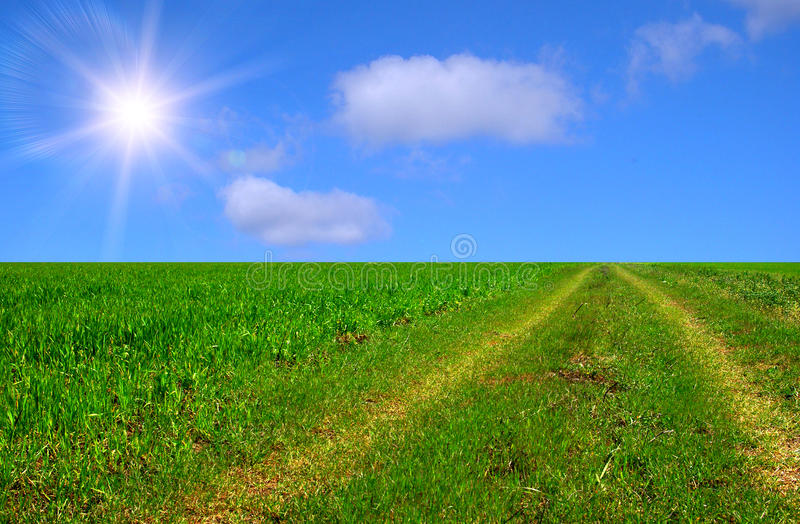 Download Beautiful sunny road stock image. Image of fresh, colorful - 9572741