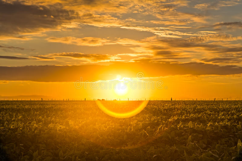 Beautiful sunrise with halo in the countryside royalty free stock image