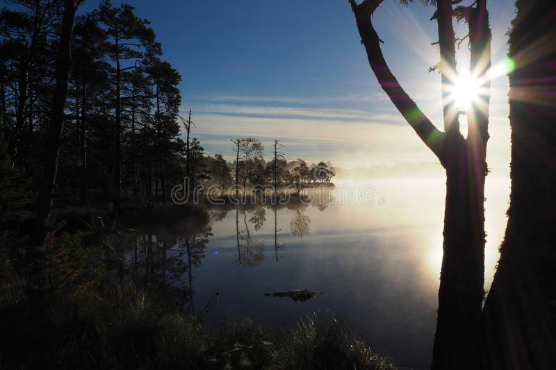 Beautiful sunrise in Kakerdaja Bog stock photos