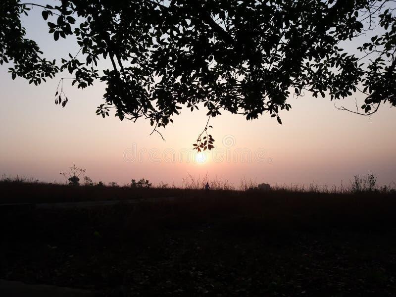 Beautiful sunrise morning stock photography