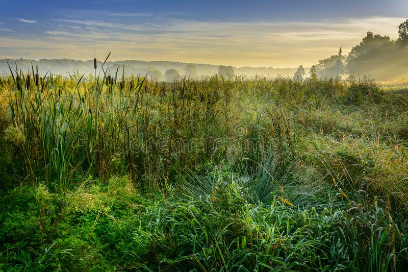 A beautiful sunrise over a misty meadow and a river stock photography