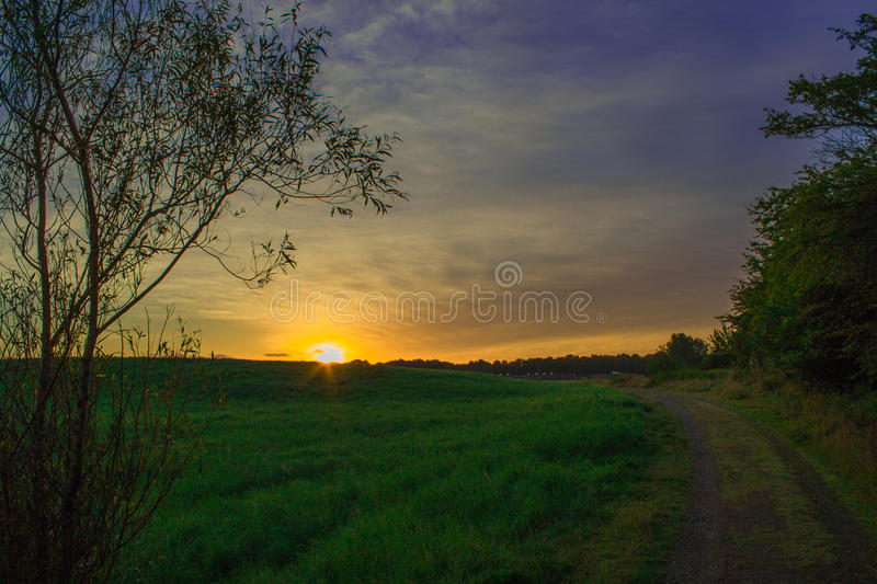 Beautiful Sunrise with a tree and a Dirt road stock photography