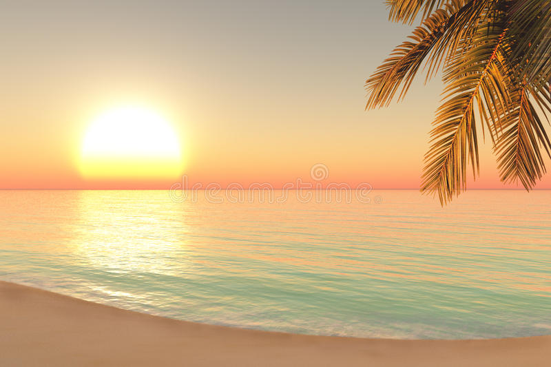 Download Sunrise on the beach stock image. Image of light, green - 29724579