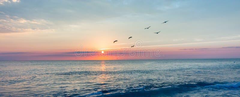 A peaceful sunrise on the Beach royalty free stock photo