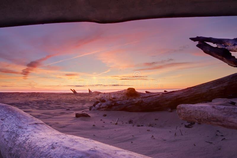 Beautiful sunset royalty free stock image