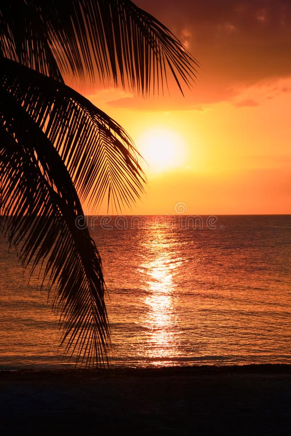Beautiful sunset on the beach, sun goes down to the sea. Calm ambient, rest and relaxation concept. Stunning view to the horizon. Outdoors, copy space stock image