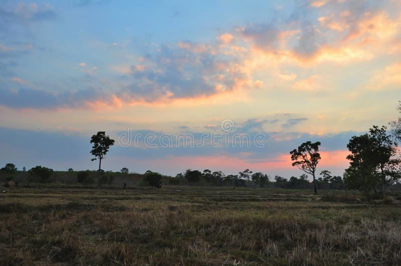 Beautiful sunset in farm royalty free stock photo