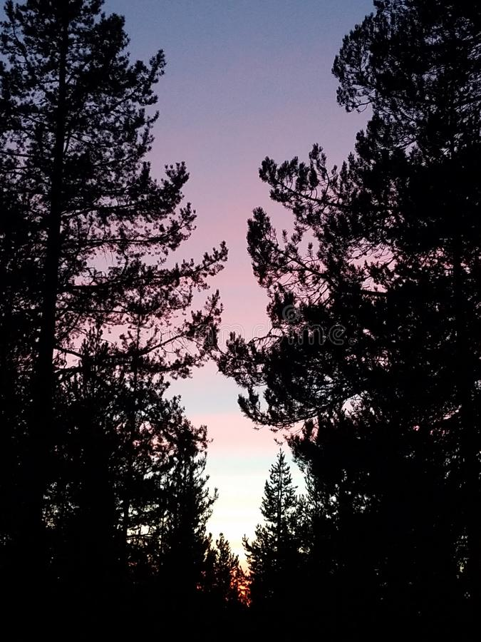Beautiful sunset in Central Oregon. Silhouette, pink stock image