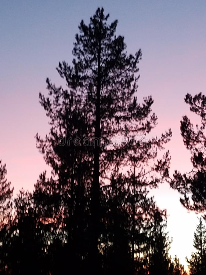 Beautiful sunset in Central Oregon. Silhouette, pink, blue, sky stock photos