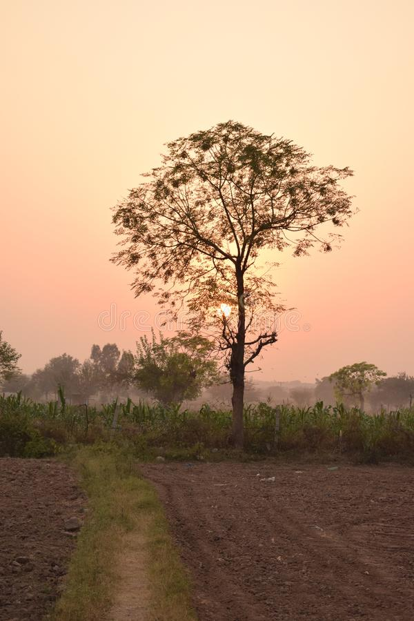 Beautiful sunset 2 color sihal village sunset View stock photography
