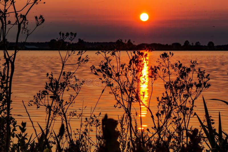 Beautiful sunset with dancing mosquitoes on the banks of lake `Zoetermeerse plas`. The Netherlands stock images