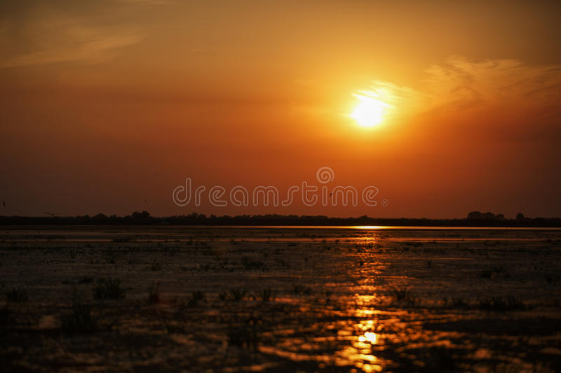 Beautiful sunset on Danube Delta royalty free stock photos