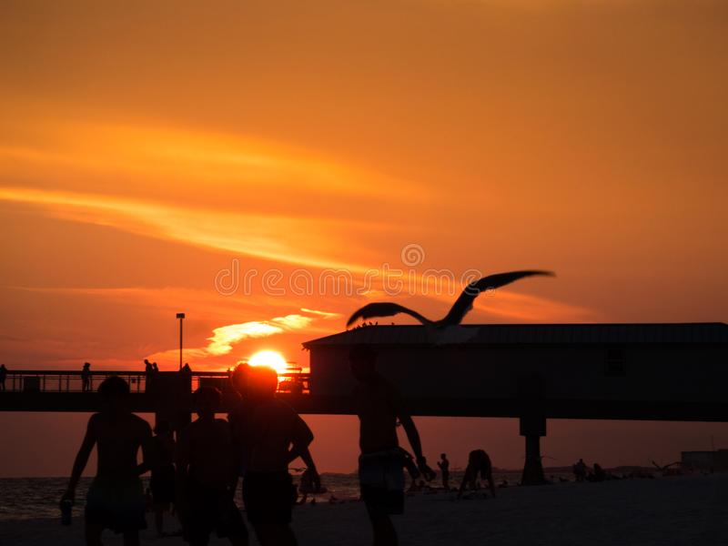 Beautiful sunset at Florida beach with silhouettes of boys playing and a flying bird. Pier in background. Dramatic orange sky with few clouds. Copyspace royalty free stock image