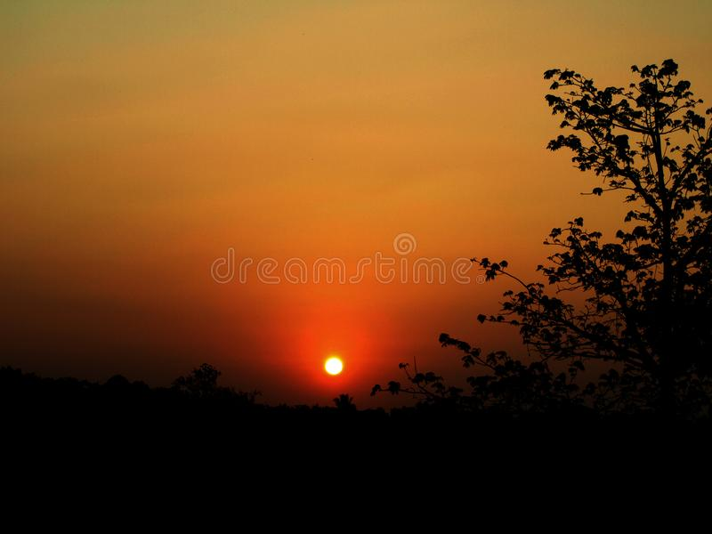 A beautiful sunset in Jepara Indonesia, a tree silhouette. Reddish-red sunlight royalty free stock photo