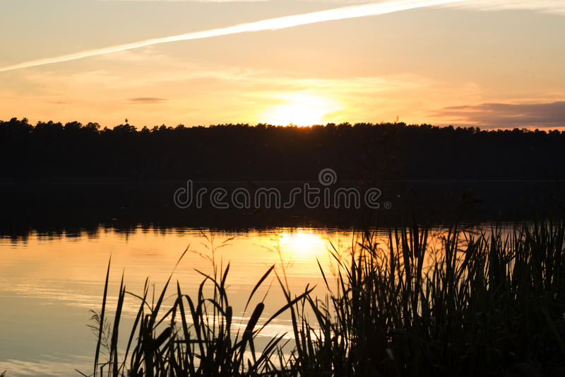 Beautiful sunset on the lake. In summer royalty free stock photos