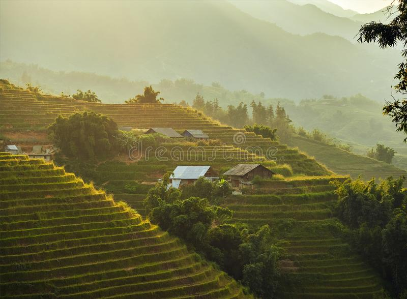 Beautiful sunset landscape with small houses on the hillside with rice terraces after rice harvesting stock images