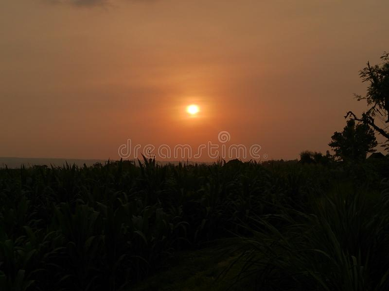 Beautiful Sunset on My Country. Photos taken in a village in Indonesia. Beautiful country and full of beautiful scenery stock photo