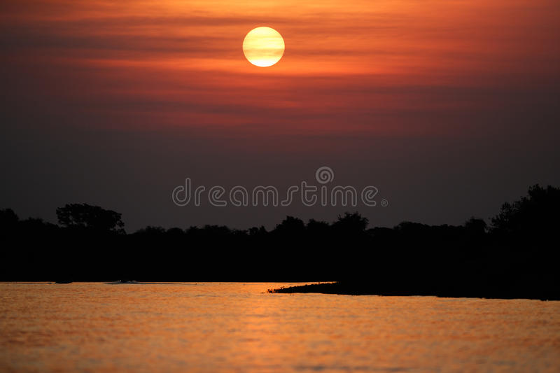 Beautiful sunset in northern Pantanal. Wild brazil, brazilian wildlife and nature, amazing landscape, riverside, by the boat, world`s largest marsh stock image