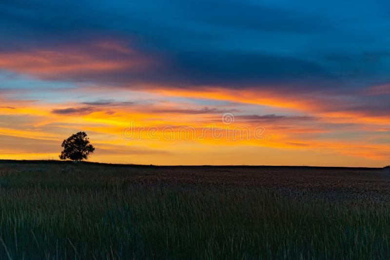 A Beautiful Sunset over an Agricultural Field royalty free stock image