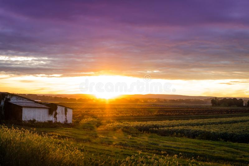 Beautiful sunset over humble farm during peak harvest, late summer stock photography