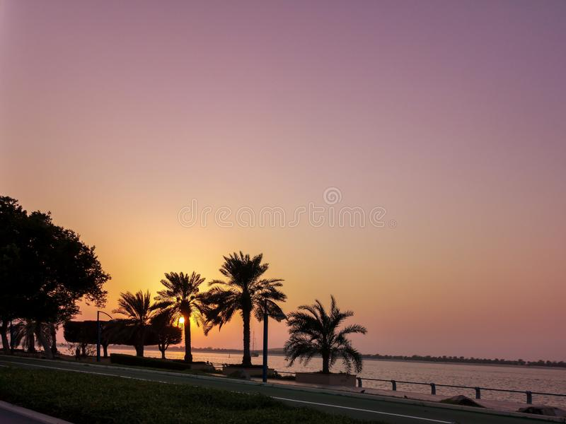 Beautiful sunset silhouette photo of palm trees - orange and purple sky.  royalty free stock images