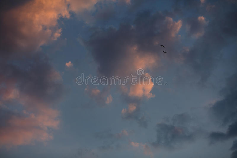 Beautiful sunset sky with bright transitions in color. Beautiful realistic sunset sky with bright transitions in color, splendid screensaver. Sunlight royalty free stock photo