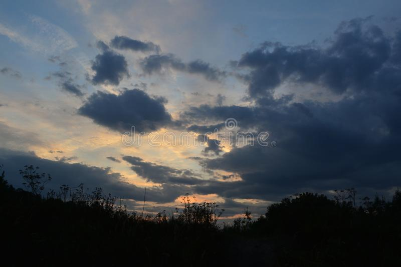 Beautiful sunset sky with dark clouds. Silhouettes of herbs on foreground stock photo