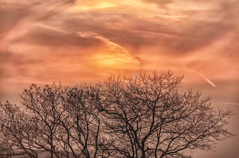Beautiful sunset sky with silhouette trees. Beautiful sunset sky with silhouette of trees in the foreground royalty free stock images