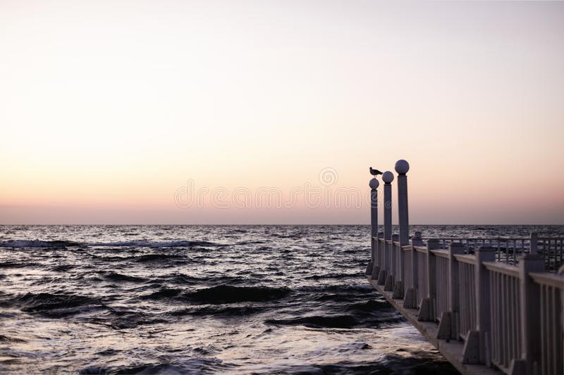 Beautiful sunset sunrise over the sea, beautiful waves and flying gulls. Selective focus royalty free stock images