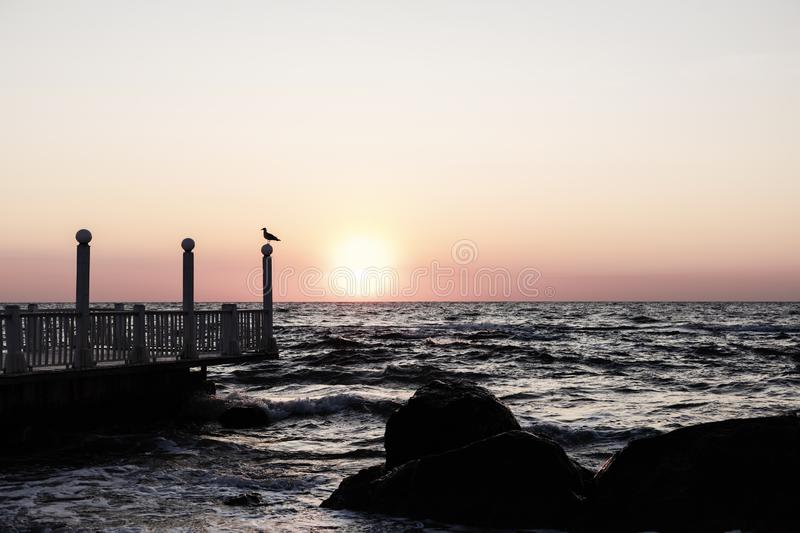 Beautiful sunset sunrise over the sea, beautiful waves and flying gulls. Selective focus stock photography