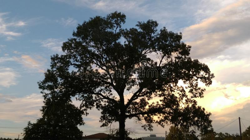 Beautiful Sunset in Texas royalty free stock photo