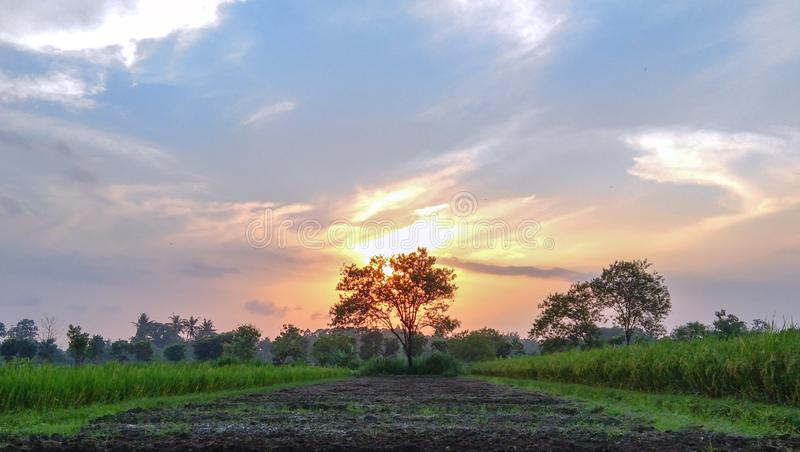 Beautiful sunsets reconcile the heart. In my village that I love royalty free stock photo