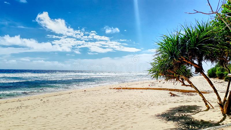 Beautiful surfing sand beach on sunny summer day royalty free stock images