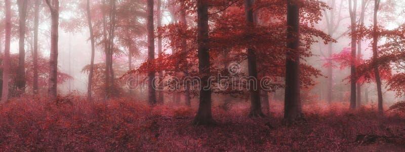 Beautiful surreal alternate color fantasy Autumn Fall forest lan. Surreal alternate color fantasy Autumn Fall forest landscape conceptual image royalty free stock photo