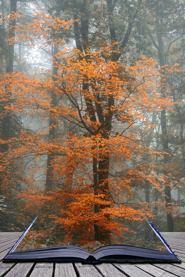 Beautiful surreal alternate color fantasy Autumn Fall forest lan stock photos