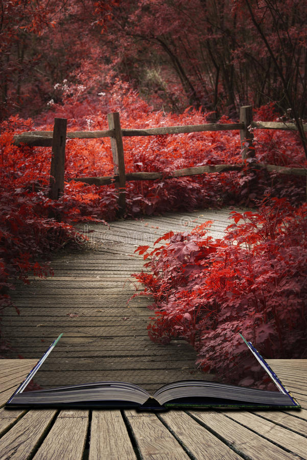 Beautiful surreal red landscape image of wooden boardwalk throughforest in Spring concept coming out of pages in open book. Stunning surreal red landscape image royalty free stock images