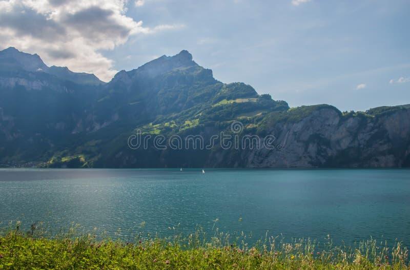 Beautiful swiss alpine landscape with lake Lucerne stock photo