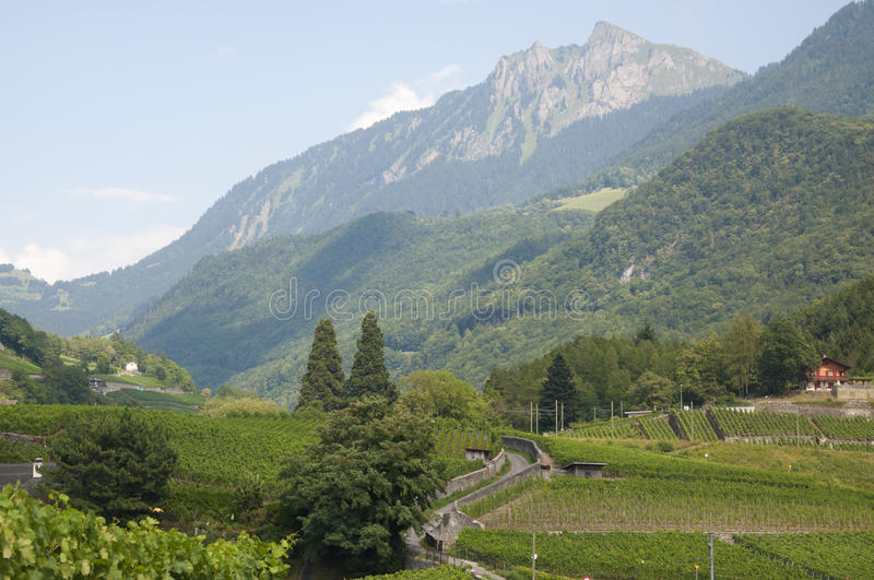 A Beautiful Swiss Countryside royalty free stock photo