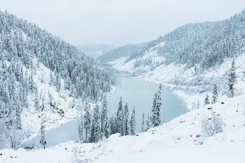 Beautiful taiga hills on Far East of Russia in early october. Taiga in winter. Beautiful nature. Snowy weather. stock image