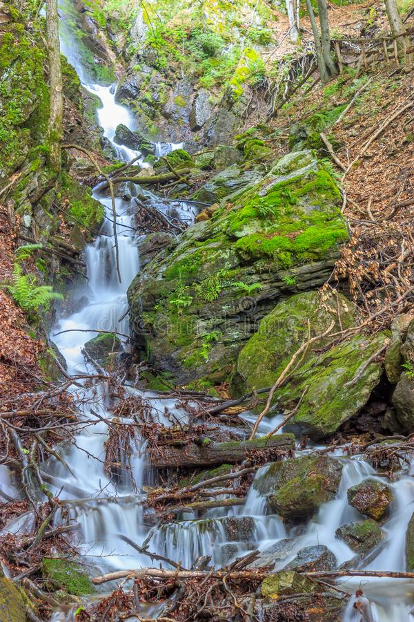 Beautiful tall waterfall flowing between moss-covered rocks and branches royalty free stock photography