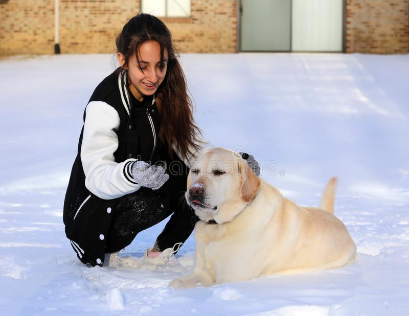 Beautiful teen girl playing with Labrador retriever. In Snow royalty free stock photography